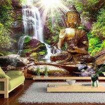 Fotótapéta - Forest Prayer  7 féle méretben   -  ajandekpont.hu