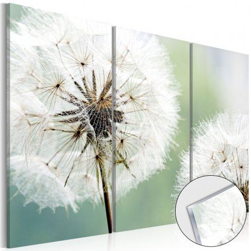 Akrilüveg-kép-Fluffy-Dandelions-Glass - ajandekpont.hu