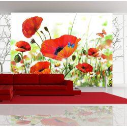 Fotótapéta - Country poppies ll