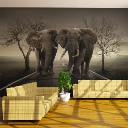 Fotótapéta - Város elefántok