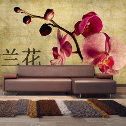 Fotótapéta - Japanese orchid ll