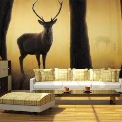 Fotótapéta - Deer in his natural habitat