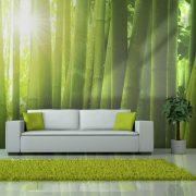 Fotótapéta - Sun and bamboo  -  ajandekpont.hu