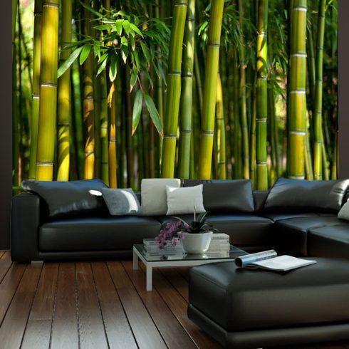Fotótapéta - Ázsiai bambusz erdő I  -  ajandekpont.hu