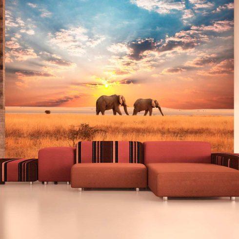 Fotótapéta - Afrikai szavanna elefánt  -  ajandekpont.hu