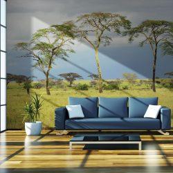Fotótapéta - Savanna trees