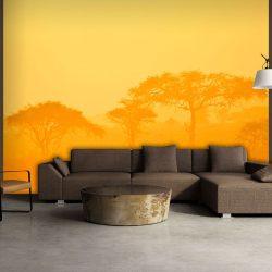Fotótapéta - Orange savanna