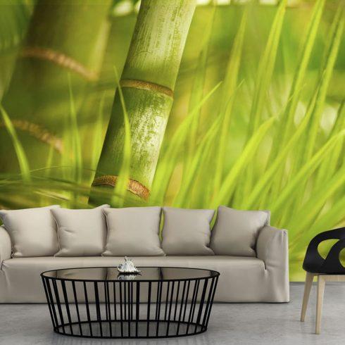 Fotótapéta - bamboo - nature zen I  -  ajandekpont.hu