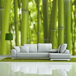 Fotótapéta - bamboo - green