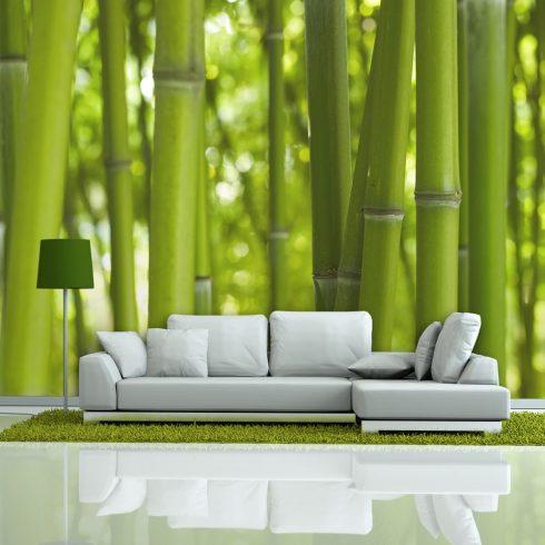 Fotótapéta - bamboo - green  -  ajandekpont.hu