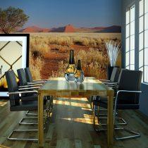 Fotótapéta - Sivatagi táj, Namíbia