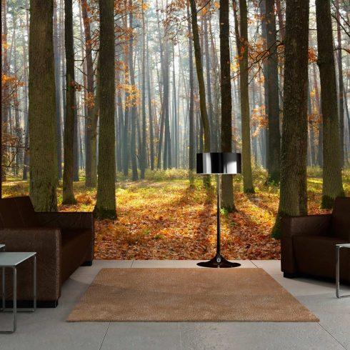 Fotótapéta - Autumn trees  -  ajandekpont.hu
