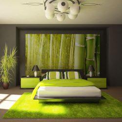 Fotótapéta - Egzotikus hangulatú bambusz l