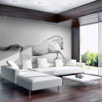 Fotótapéta - White gallop  -  ajandekpont.hu