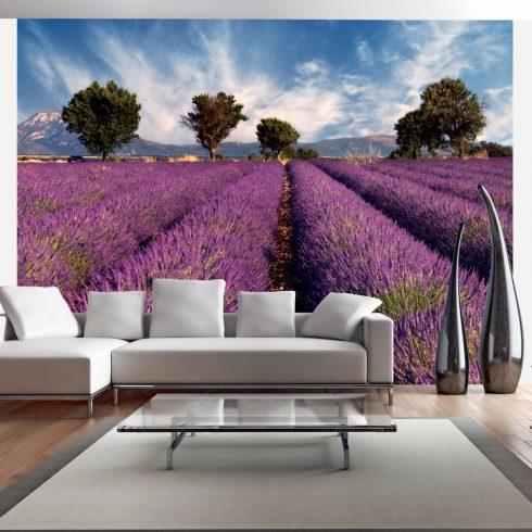 Fotótapéta - Lavender field in Provence, France  -  ajandekpont.hu