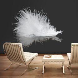 Fotótapéta - White feather  -  ajandekpont.hu