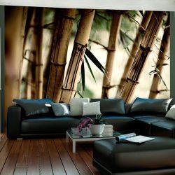 Fotótapéta - Fog and bamboo forest