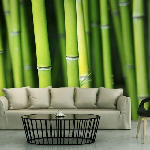 Fotótapéta - Bamboo  -  ajandekpont.hu
