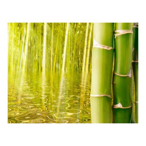 Fotótapéta - Egzotikus hangulatú bambusz II  -  ajandekpont.hu