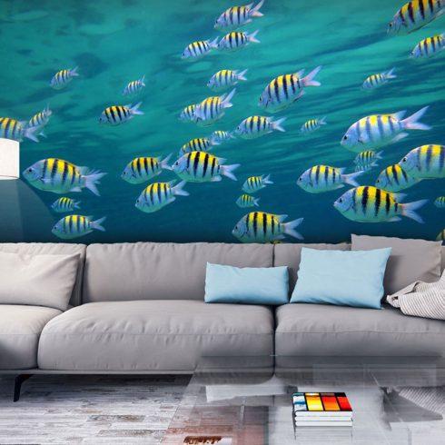 Fotótapéta - Underwater táj - Karibi  -  ajandekpont.hu