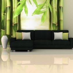 Fotótapéta - Bamboo and zen