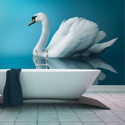 Fotótapéta - swan - reflection