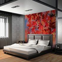 Fotótapéta - Red japanese maple