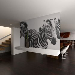 Fotótapéta - Three zebras