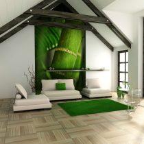 Fotótapéta - bamboo - detail