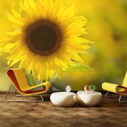 Fotótapéta - Sunflower