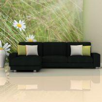 Fotótapéta - Grass and daisies