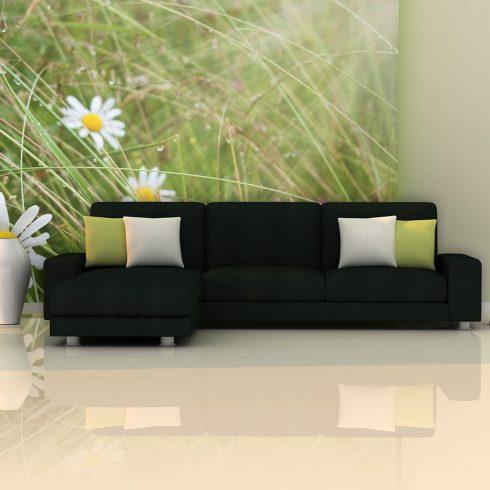Fotótapéta - Grass and daisies  -  ajandekpont.hu