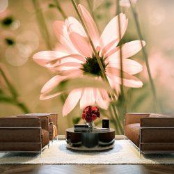 Fotótapéta - Summer flower