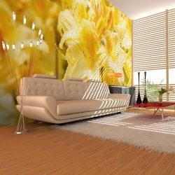 Fotótapéta - Yellow azalea