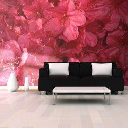Fotótapéta - Red azalea
