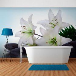 Fotótapéta - Tiszta, fehér liliomok