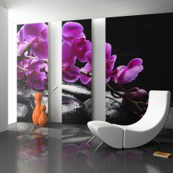 Fotótapéta - Relaxáló pillanat: orchidea virág és kövek ll