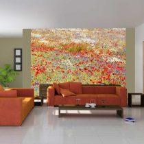 Fotótapéta - meadow: poppies, cornflowers...