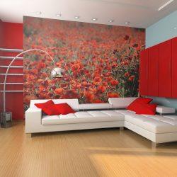 Fotótapéta - A réten pipacsok és a vadvirágok