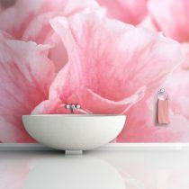 Fotótapéta - Pink azalea virágok  -  ajandekpont.hu