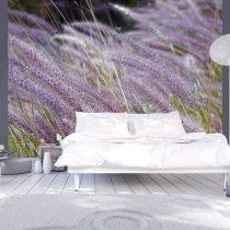 Fotótapéta - Zöldmezős és lila virágok