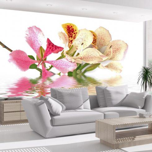Fotótapéta - Trópusi virágok - orchidea fa (bauhinia)  -  ajandekpont.hu