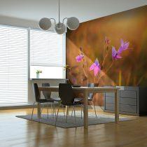 Fotótapéta - Violet harangvirág