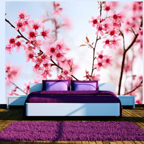 Fotótapéta - Symbol of Japan - Sakura virág  -  ajandekpont.hu