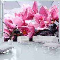 Fotótapéta - Orchidea virág zen kövek