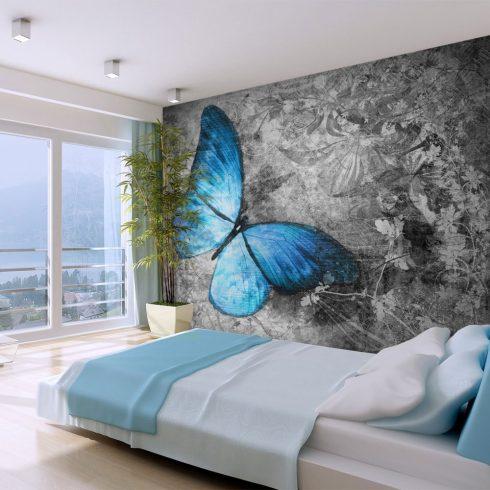 Fotótapéta - Blue butterfly  -  ajandekpont.hu
