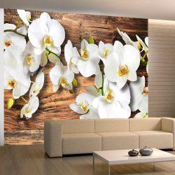 Fotótapéta - Snow-white orchids