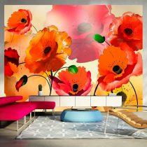 Fotótapéta - Velvet poppies l