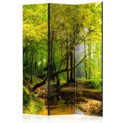Paraván - Forest Clearing [Room Dividers]3 részes  135x172 cm
