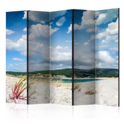 Paraván - Beach on the Costa da Morte II [Room Dividers] 5 részes 225x172 cm